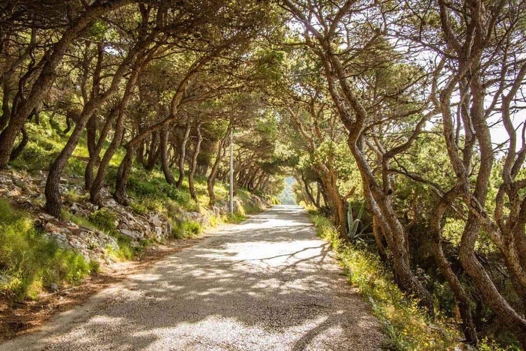 Hiking Croatia with kids - Hvar Town to Milna Beach