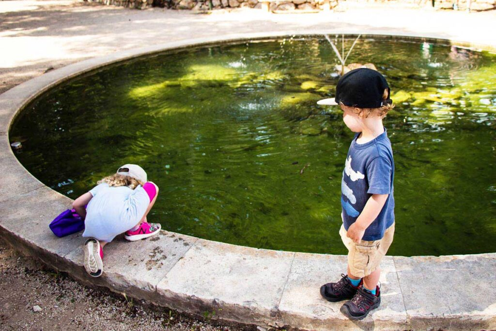 Gradac Park in Dubrovnik with toddlers