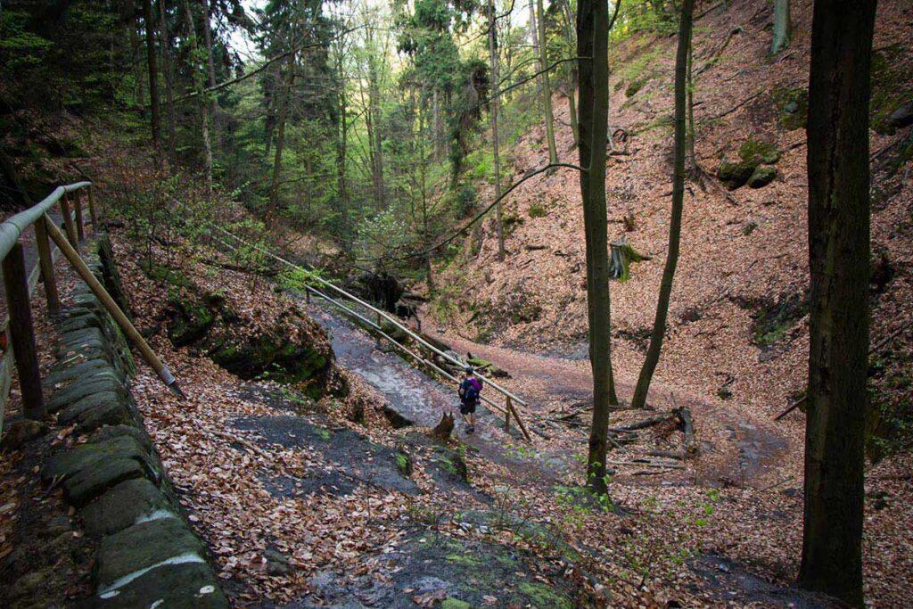 Pravcicka Brana hike in Bohemian Switzerland with kids