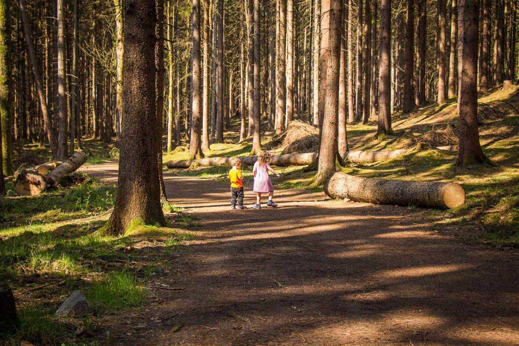 hiking in Bohemian Switzerland National Park with Kids