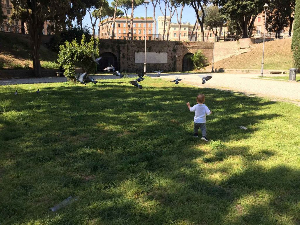 Kids don't need to find a Rome playground to have fun - Rome is full of pigeons for kids to chase!
