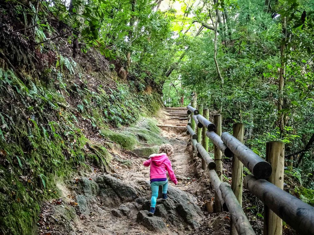 A toddler hikes up Daimonji in Kyoto, Japan