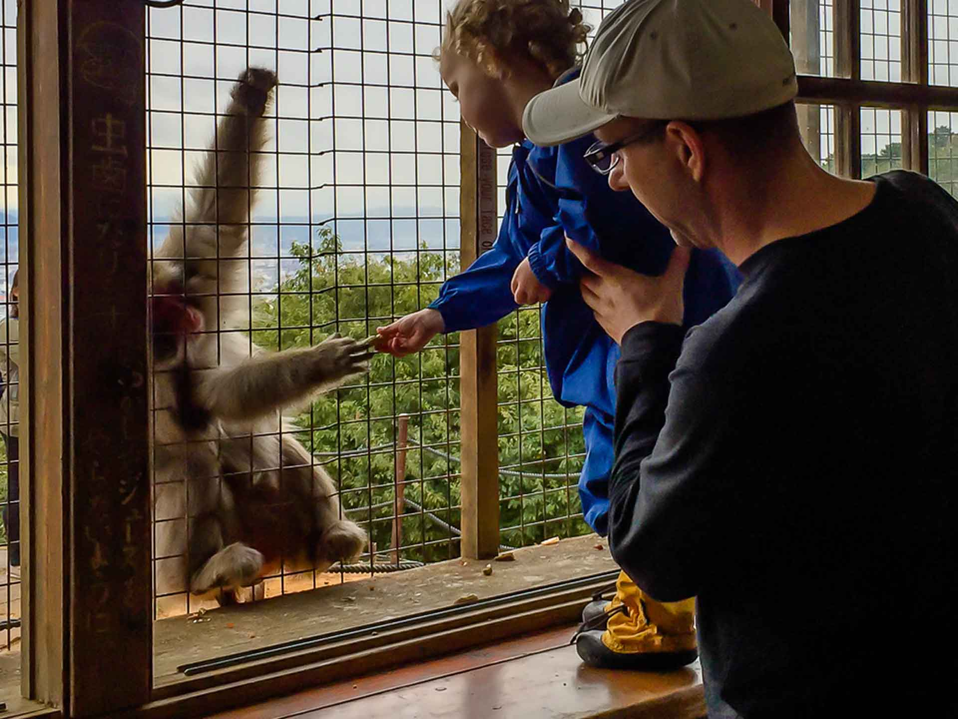 A toddler feeds a monkey at Kyoto's Monkey Park Iwatayama