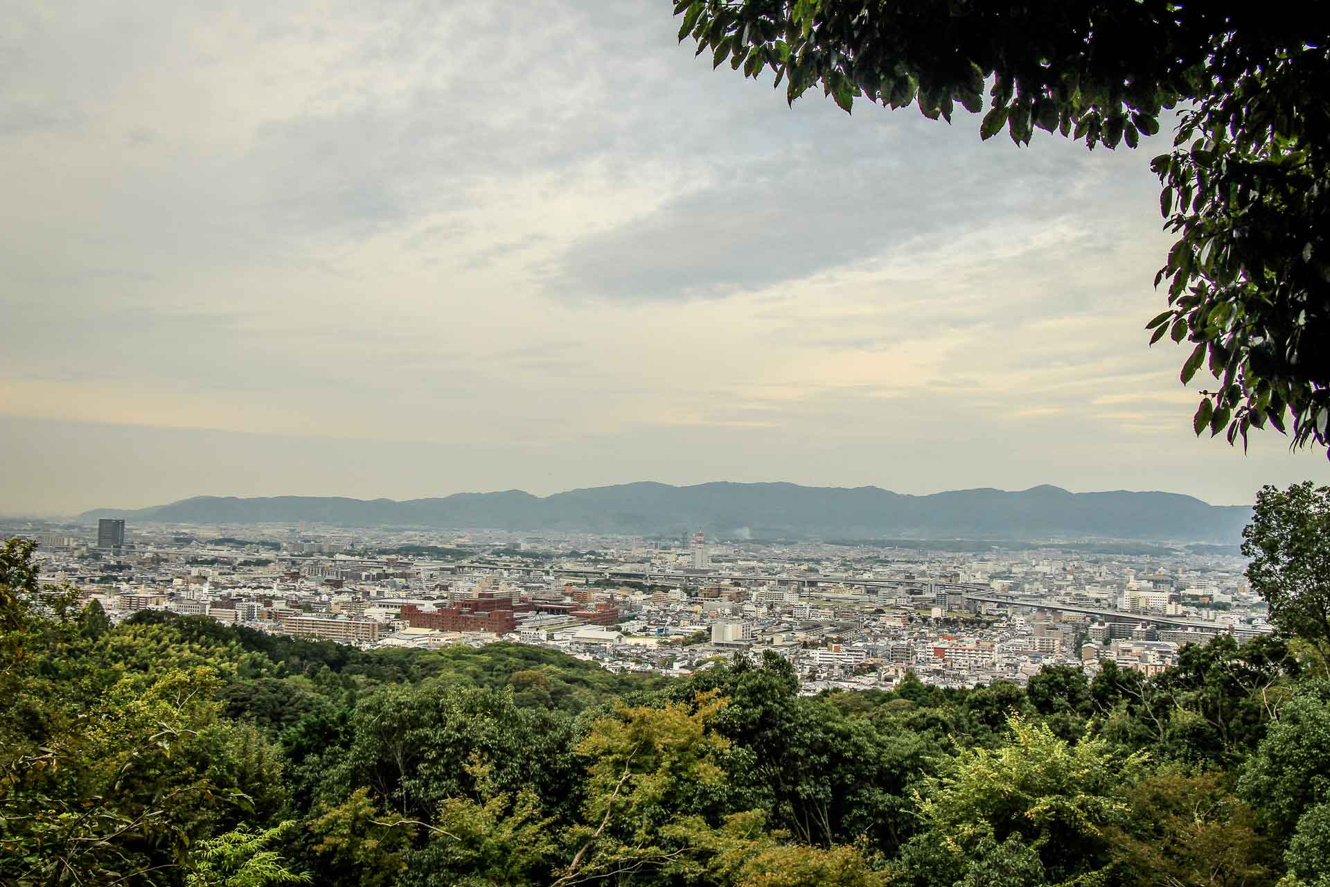 View from Fushimi Inari Kyoto