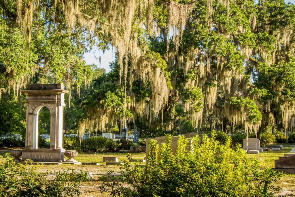 southern usa road trip with kids - 2 Days in Savannah with Kids - Bonaventure Cemetery
