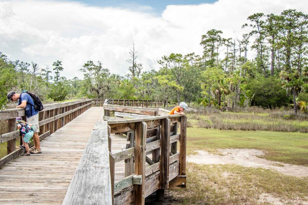 southeast us road trip with kids - 2 Days in Savannah with Kids - scaring Fiddler Crabs at Skidaway State Park