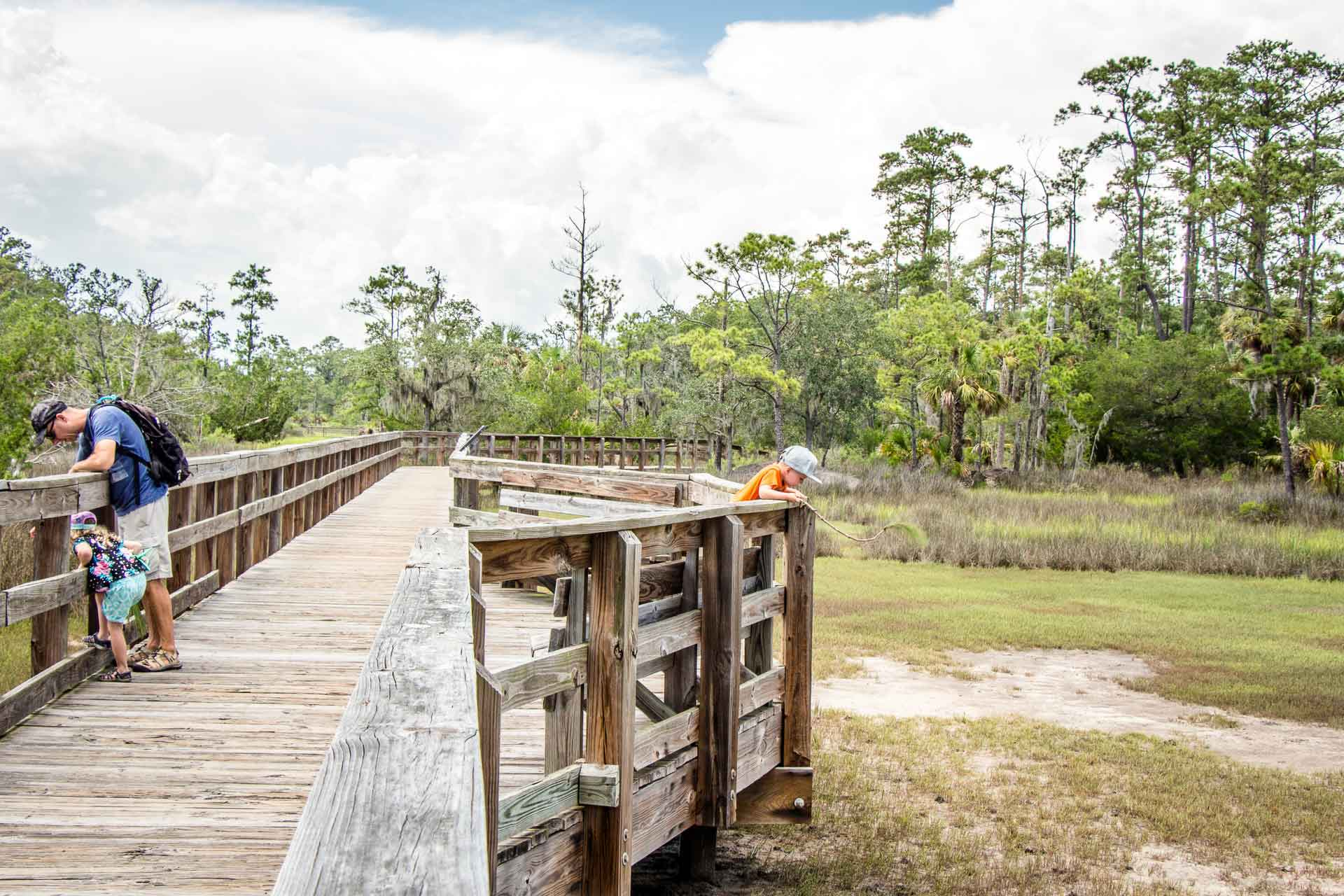 Family Can Travel - 2 Days in Savannah with Kids - Looking for Fiddler Crabs at Skidaway State Park