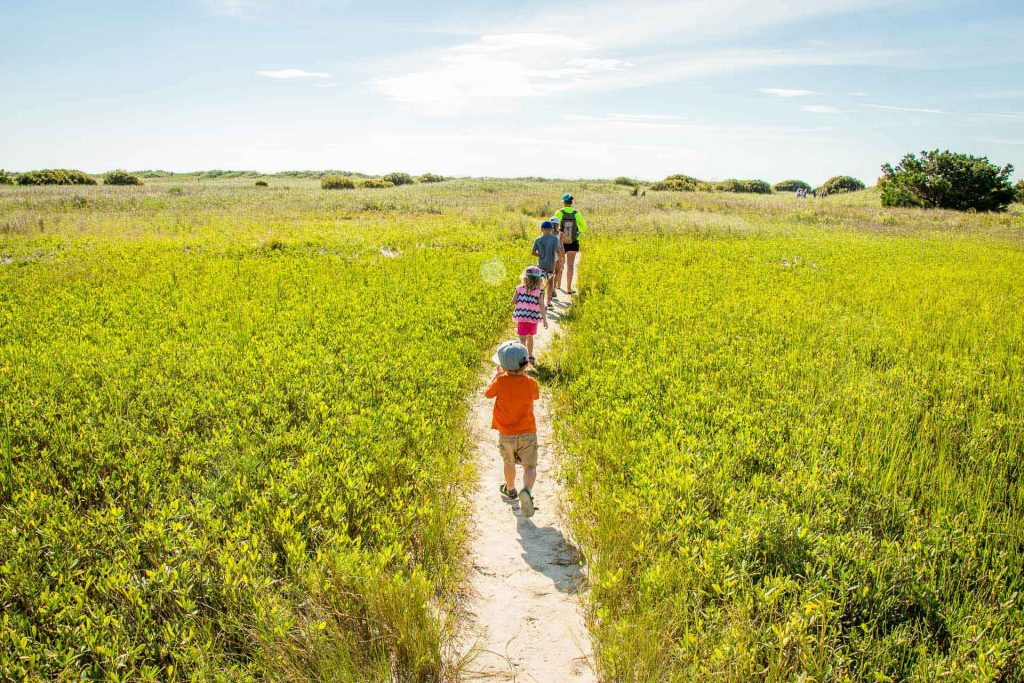 things to do in Wilmington with kids - Eco Tour on Masonboro Island