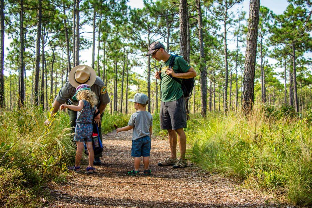 Things to do with kids in Wilmington, NC - See Venus Flytraps in Carolina Beach State Park