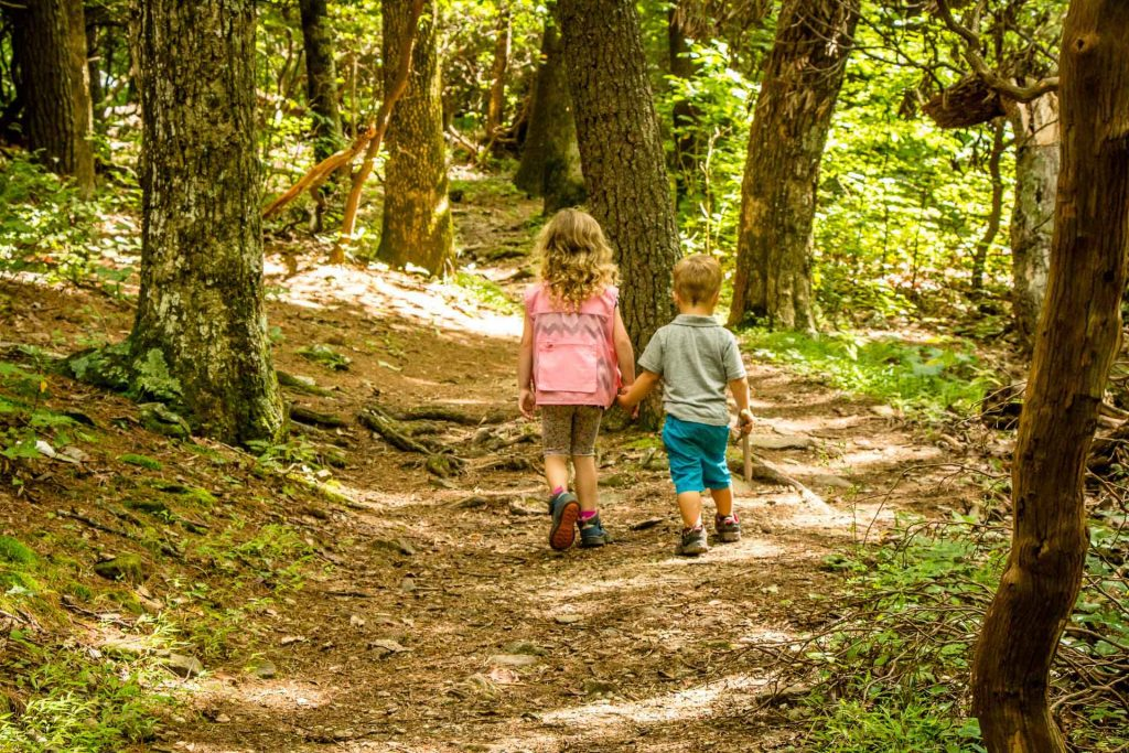 Blue Ridge Parkway Road Trip with kids - Fallingwater Cascades hike