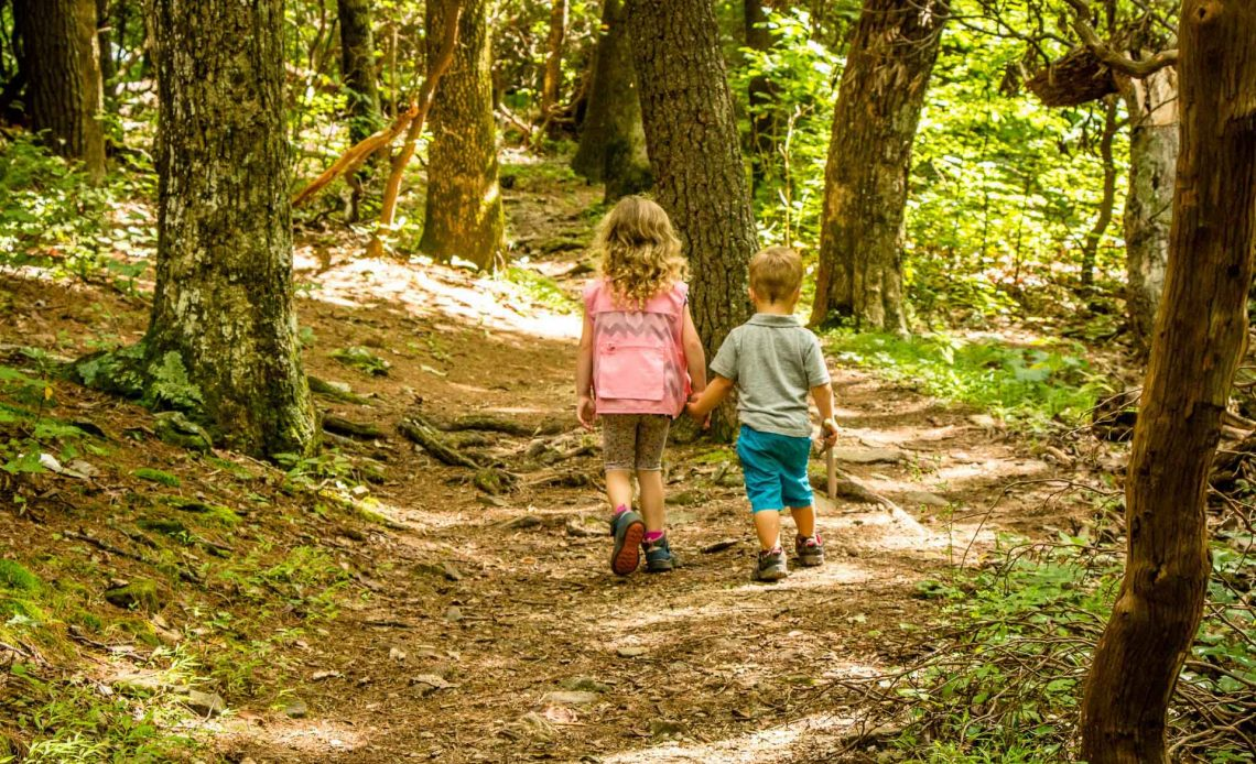 Family Can Travel - Family Friendly Hikes Along the Blue Ridge Parkway - Fallingwater Cascades