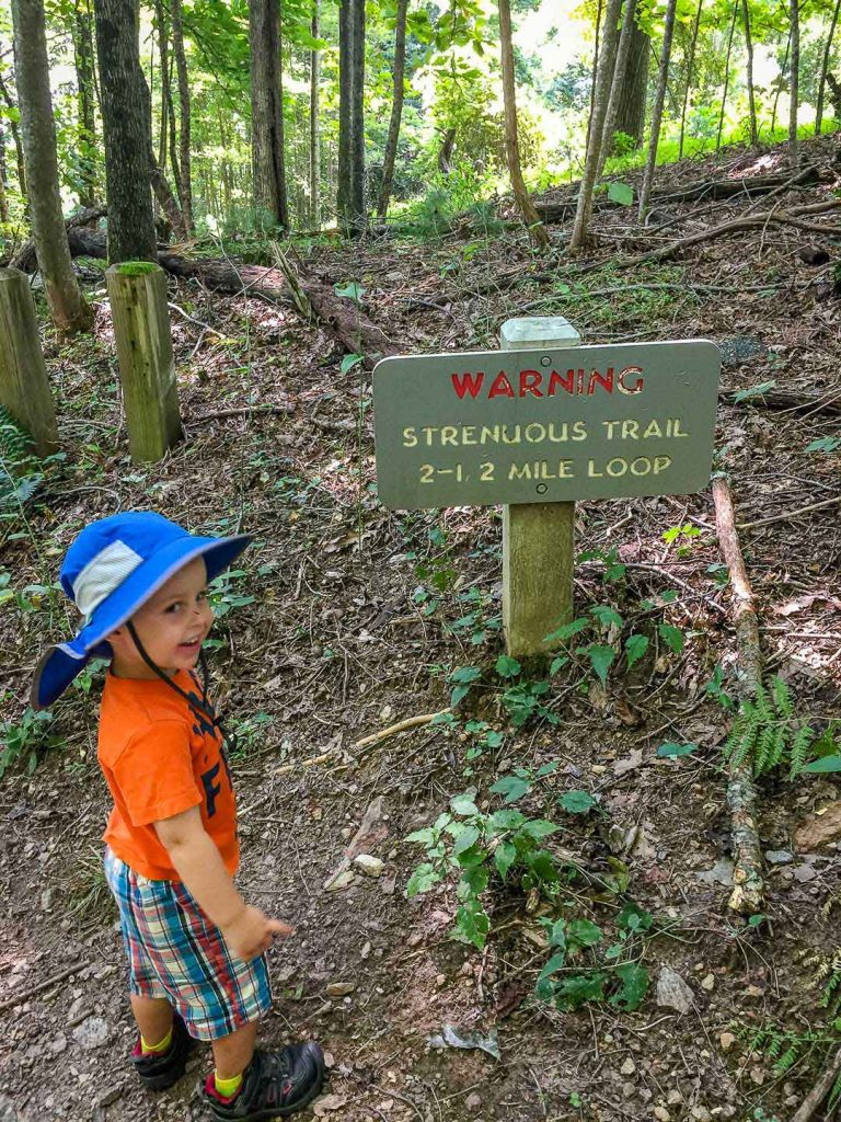 best blue ridge parkway hikes - Gully Creek Trail is a short, hard hike in Cumberland Knob recreation area