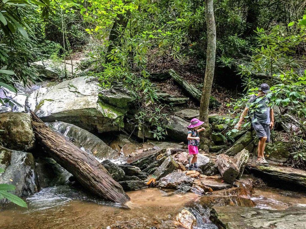Family Can Travel - Family Friendly Hikes Along the Blue Ridge Parkway - Gully Creek Trail - many creek crossings