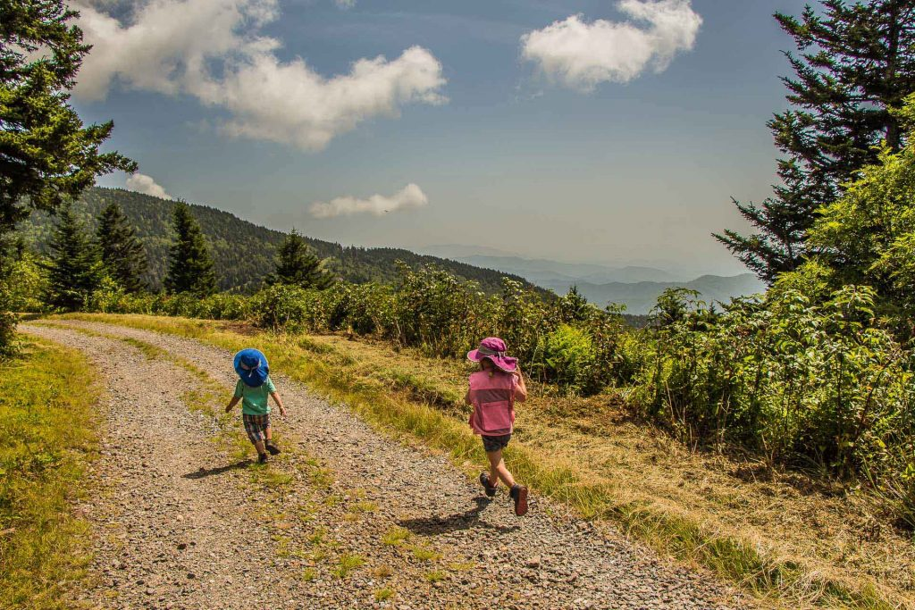 Family Can Travel - Family Friendly Hikes Along the Blue Ridge Parkway - Mount Mitchell - chasing butterflies