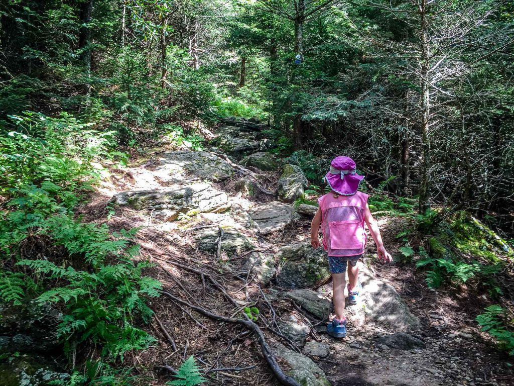 Hiking the Blue Ridge Parkway - Camp Alice Trail on Mount Mitchell - some sections of the the trail is hard for small kids