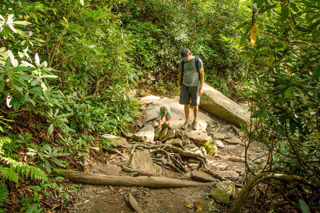 Kid-Friendly Hikes Along the Blue Ridge Parkway - Rough Ridge Trail  - lots of rocks on the trail is a little hard for toddlers