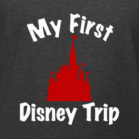 So many families were wearing matching vacation t-shirts at Disney