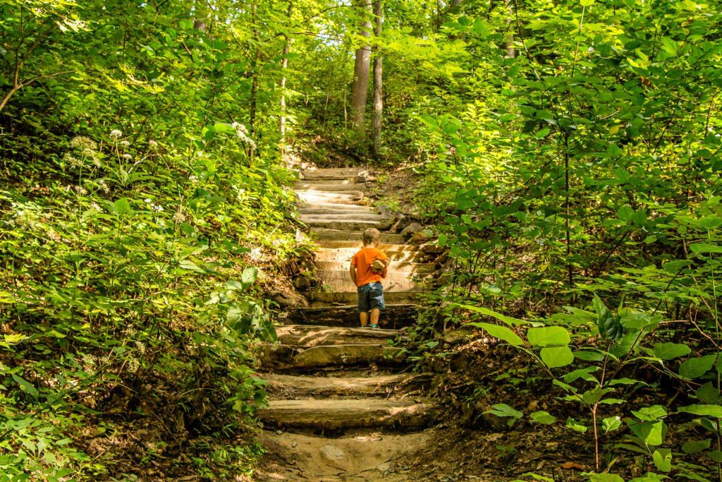 Family Can Travel - Three Days of Hiking Around Asheville, NC with Kids - Chimney Rock State Park - Four Seasons Trail (1)