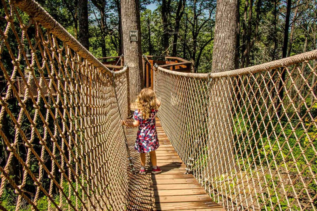best places to visit in southern usa - Anakeesta Treetop Skywalk with kids - Gatlinburg, TN