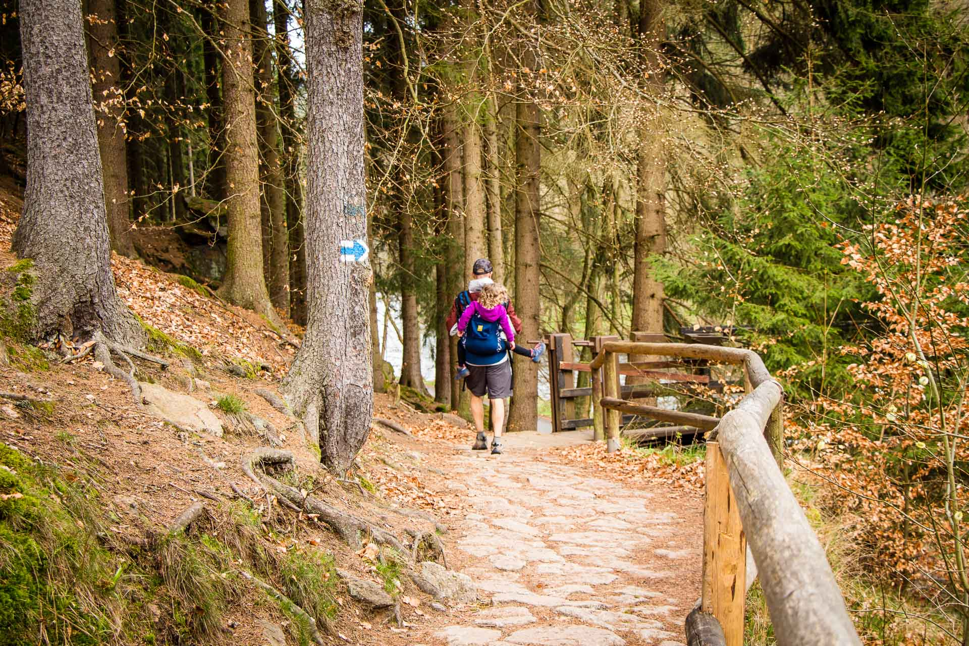 Hiking Karlovy Vary to Loket with kids