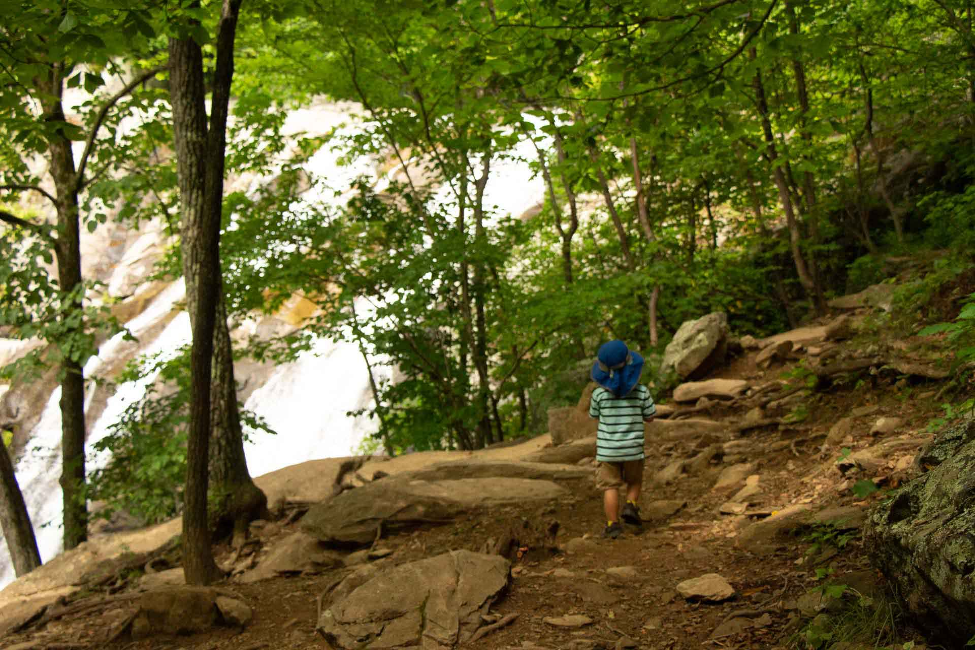 Whiteoak Canyon trail with kids Shenandoah