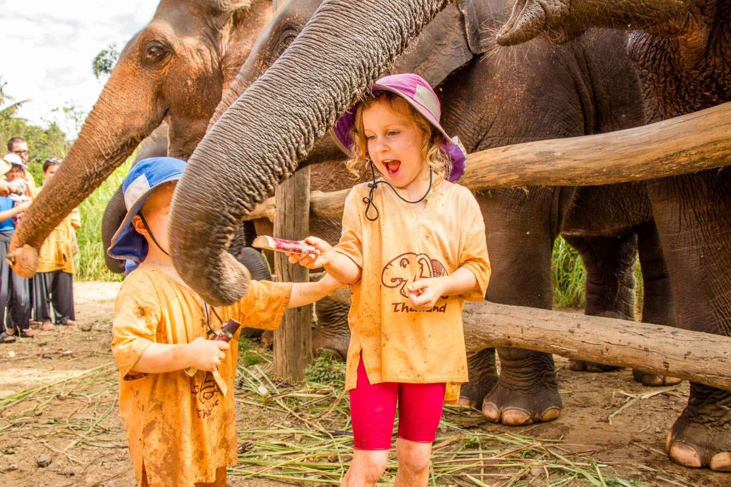 Elephant sanctuary with toddler