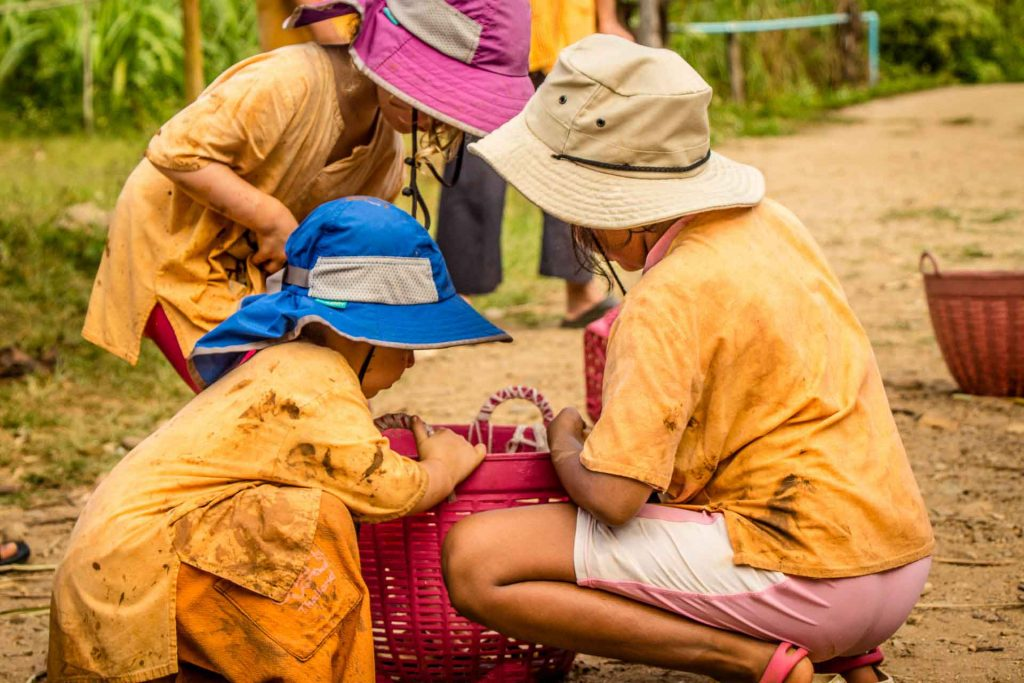 Chiang Mai Elephant Nature Park with Kids