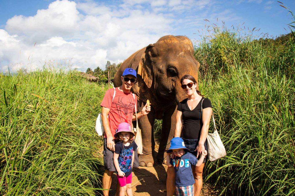 Family package tour at elephant nature park Chiang Mai Thailand