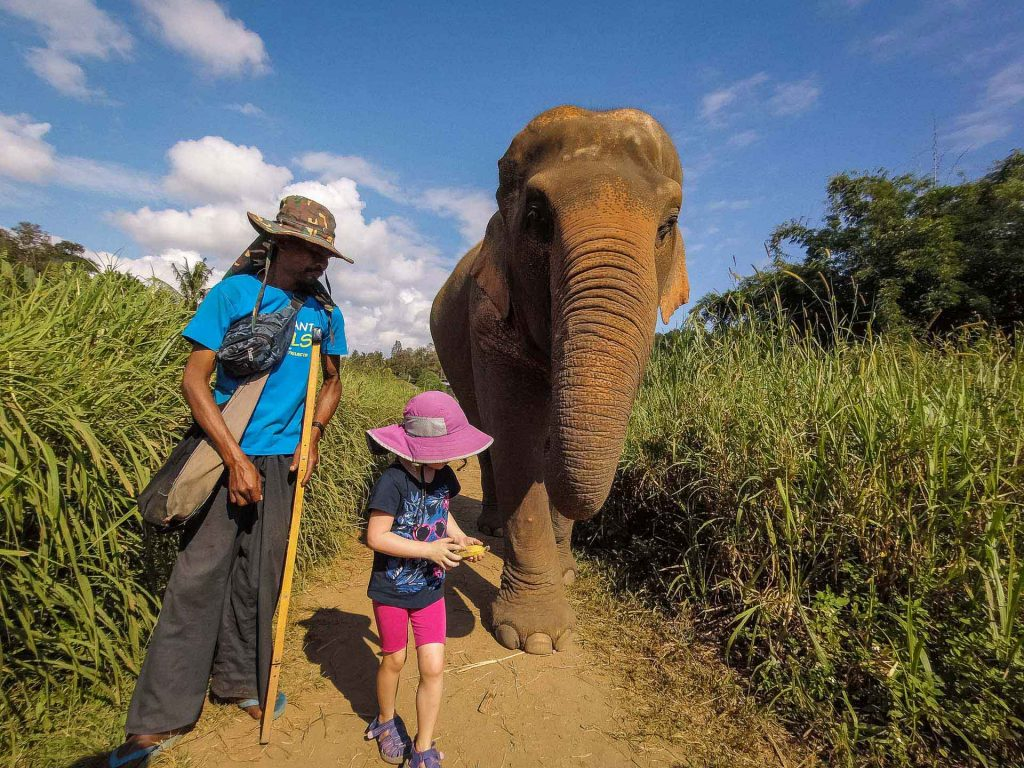 Elephant Nature Park with kids
