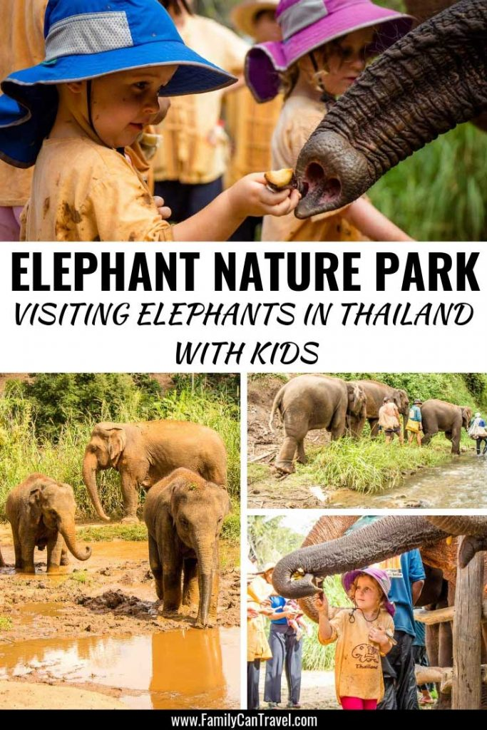 Choose the right elephant sanctuary in Thailand! Elephant Nature Park doesn't allow riding elephants and is a great place to visit with kids || Elephants Thailand | Elephant sanctuary with kids || Thailand with Kids