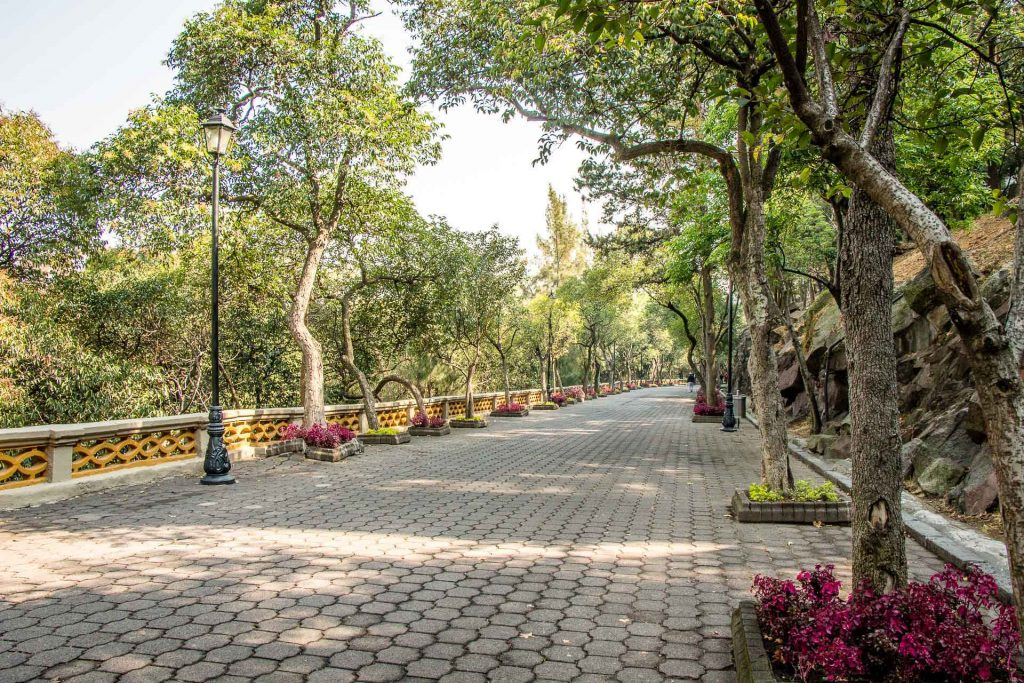 Pathway up to Castillo de Chapultepec