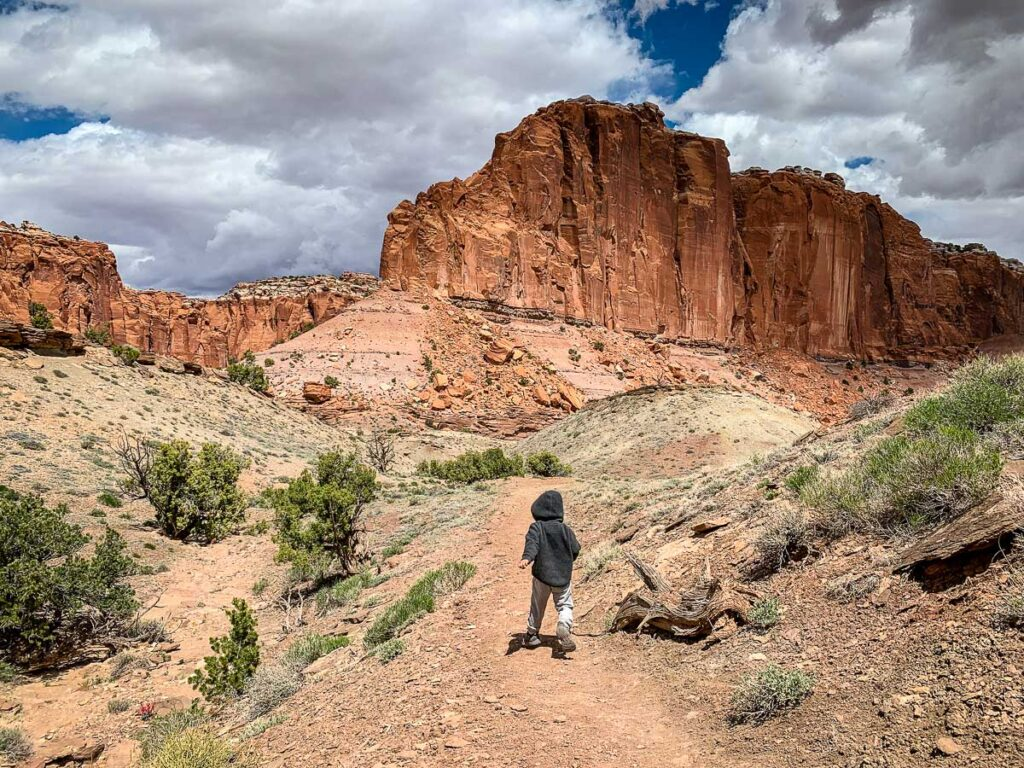 what to do in capitol reef national park