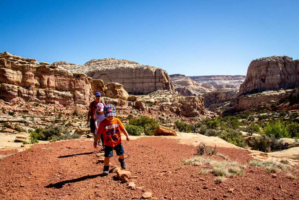 capitol reef national park trails