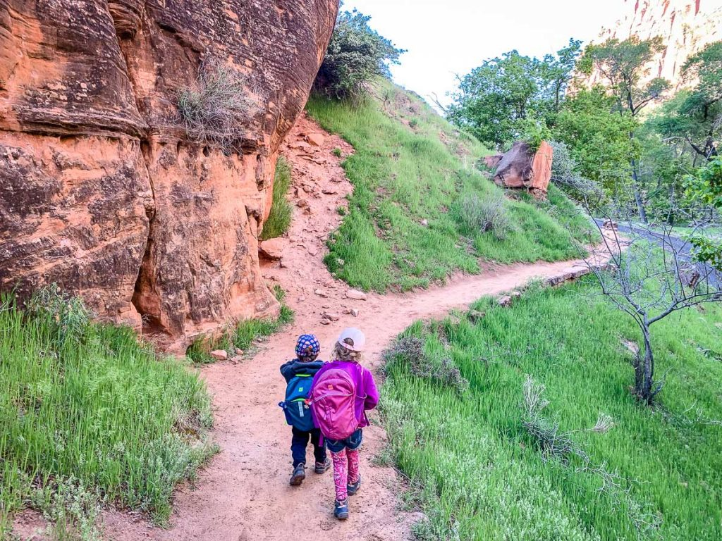 Hiking Zion national park trails with kids