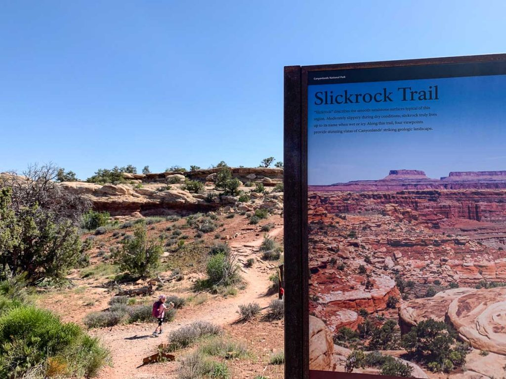 slickrock foot trail in the needles district of canyonlands national park utah