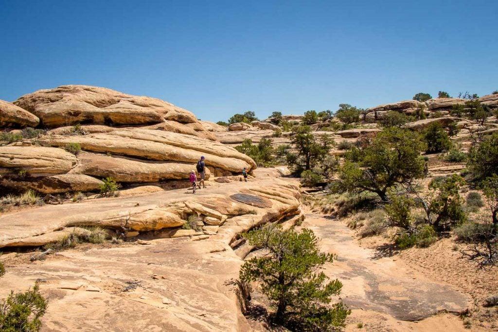 the needles canyonlands hikes - Slickrock Foot Trail