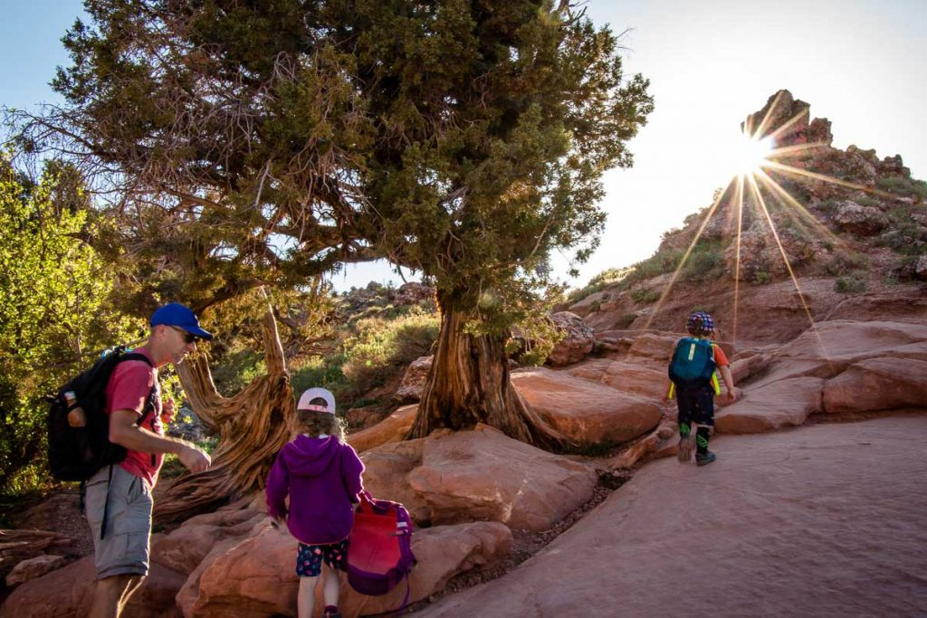 Delicate Arch Trail in Arches NP