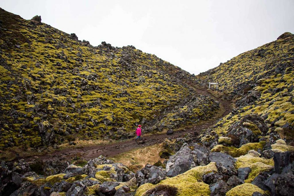 Hiking trails for kids in Iceland
