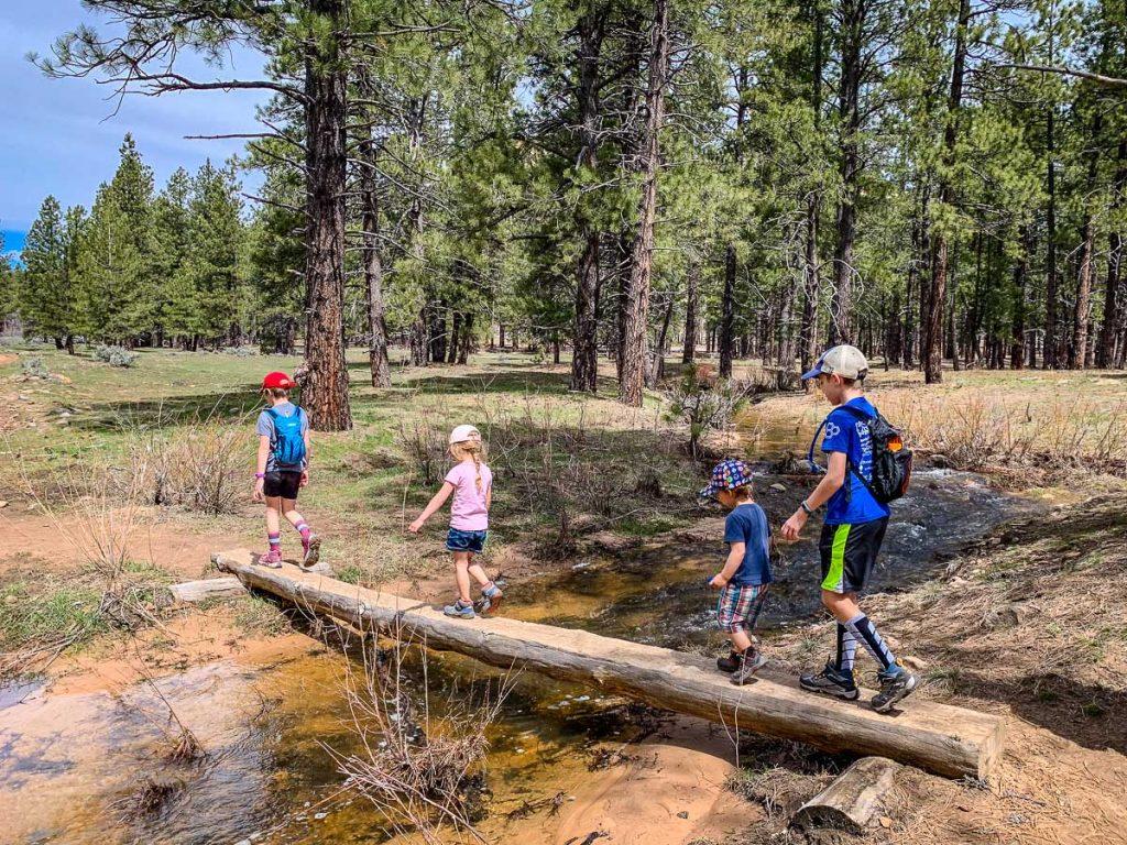 Hiking Northgate Peaks with Kids