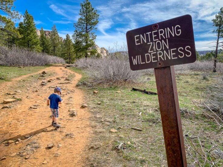 Northgate Peaks Trail with Kids