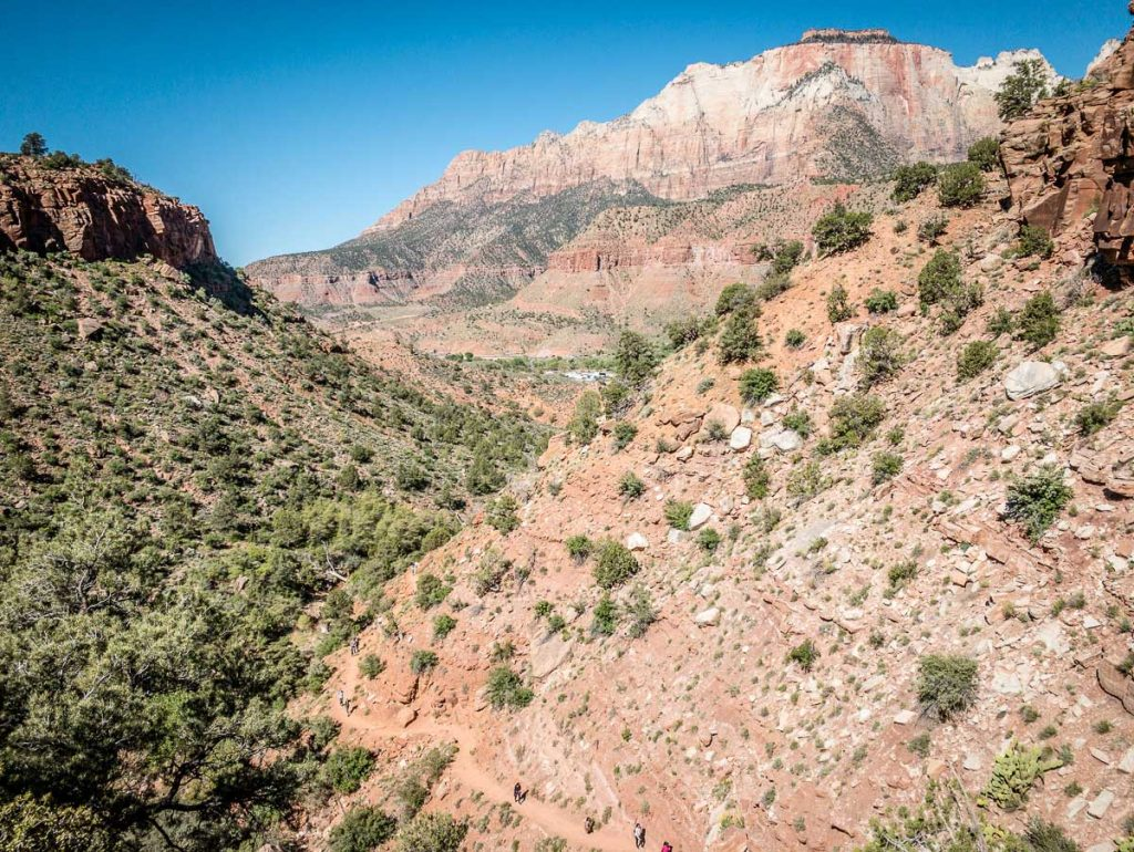 the watchman zion - canyon views