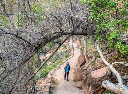 Hiking in Zion Canyon National Park