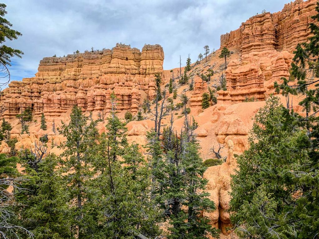 Golden Wall Trail in Red Canyon Utah