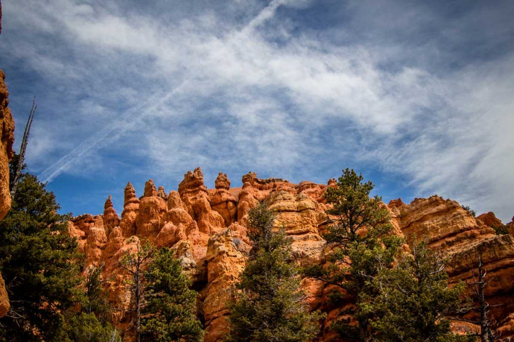 Pink Ledges Trail in Red Canyon Utah