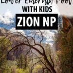 Who doesn't like walking behind a waterfall! Perfect on a hot day plus it's a family friendly hike in Zion National Park with Kids?