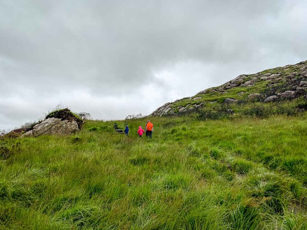 image of grassy hill on Torc Mountain Killarney National Park Ireland