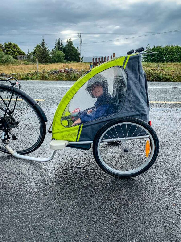 image of boy in bike trailer