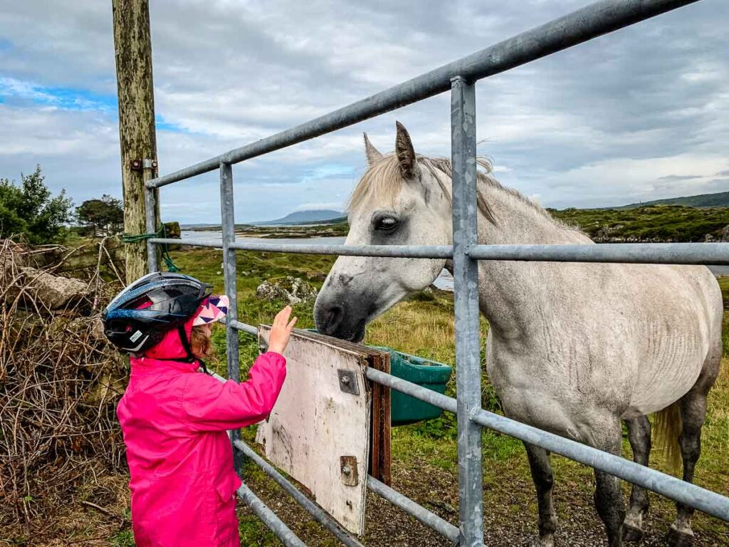 image of girl with bike helmet and a horse