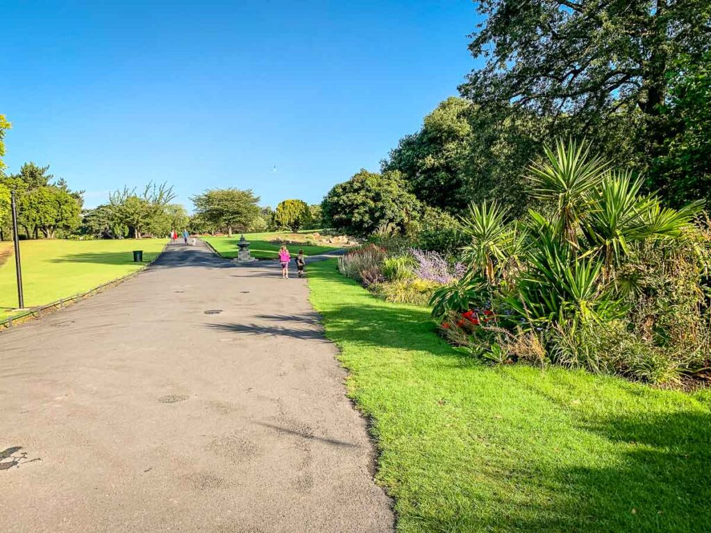 image of pathway in Phoenix Park Dublin