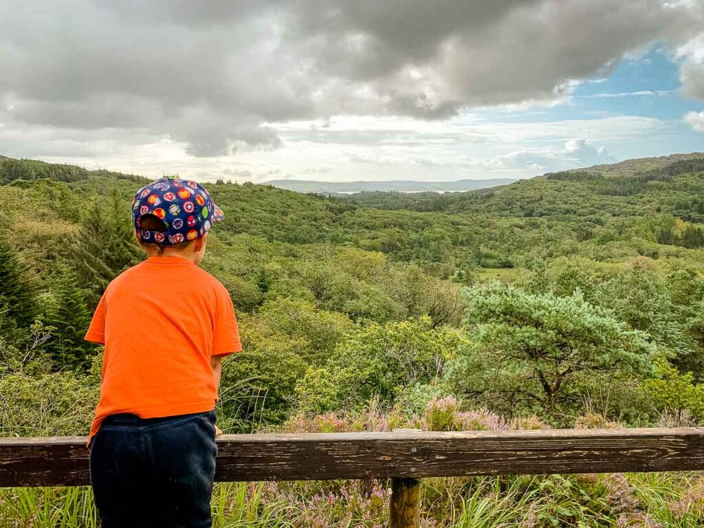 Image of boy looking at the view of mountains and trees in Glengarriff Woods Nature Reserve